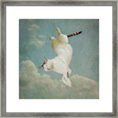 Dreaming Of Tiepolo Framed Print by Sally Banfill