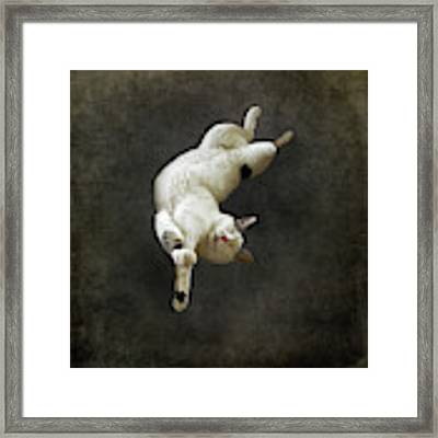 Dreaming Of Tintoretto Framed Print by Sally Banfill