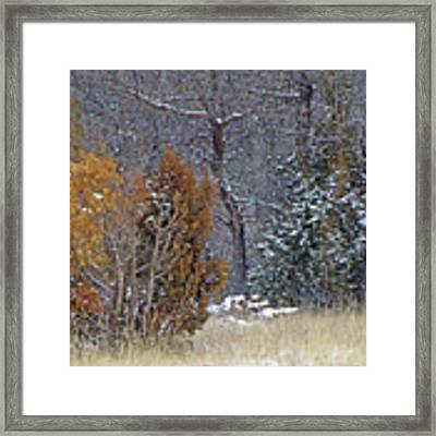 Early Winter On The Western Edge Framed Print by Cris Fulton