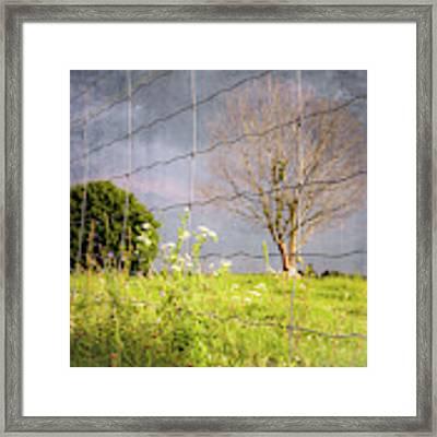 Farm Scene - A New Perspecitve Framed Print by Garvin Hunter