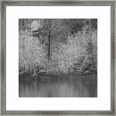 Filter Series 200b Framed Print by Jeni Gray