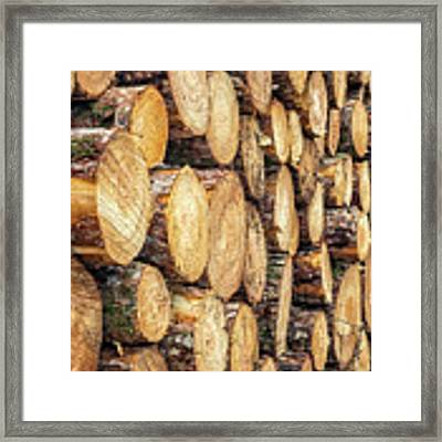 Firewood  Framed Print by Nick Bywater