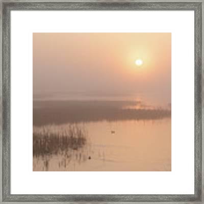 Foggy Sunrise At Cheyenne Bottoms -02 Framed Print by Rob Graham