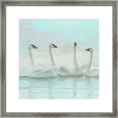 Four Swans Watercolor Group Framed Print by Patti Deters
