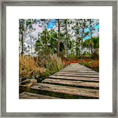 Halpatiokee Footbridge Framed Print by Tom Claud