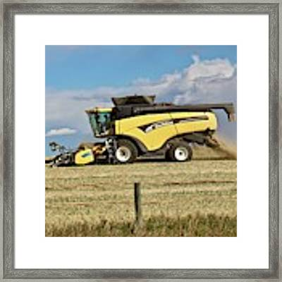Harvest Time Framed Print by Ann E Robson