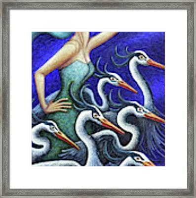 Heron's Run Framed Print by Amy E Fraser