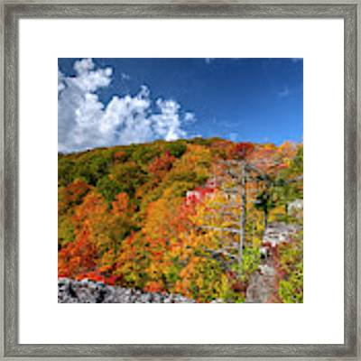 Hillside Of Color Framed Print by Dan Friend
