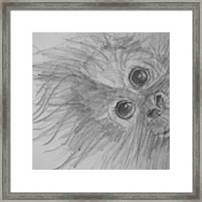 How's It Hangin'? Sketch Framed Print by Jani Freimann