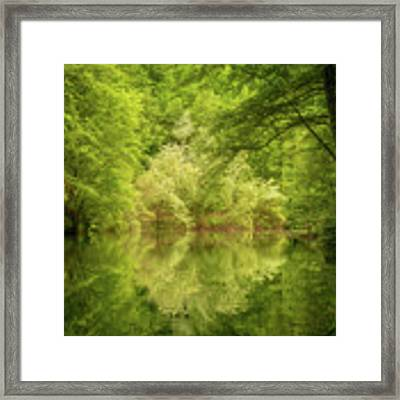 In The Heart Of Nature Framed Print by Mirko Chessari