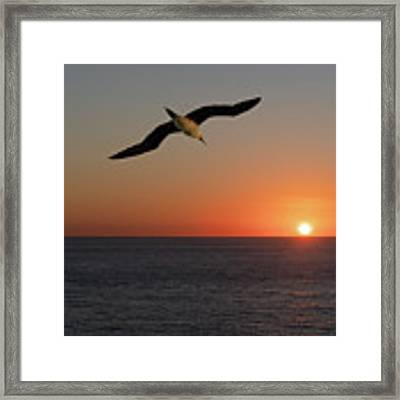 Into The Setting Sun Framed Print by William Dickman