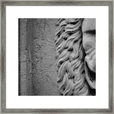 Lion Statue Portrait Framed Print by Nathan Bush