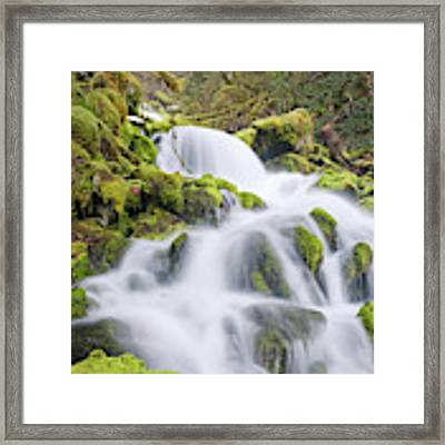 Mossy Falls Framed Print by Nicole Young