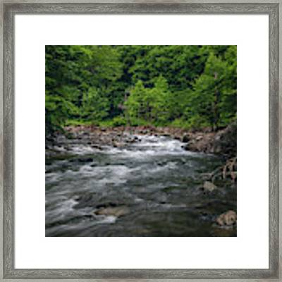 Mountain Stream In Summer #2 Framed Print by Tom Claud