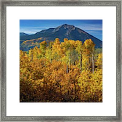 Mountains And Aspen Framed Print by John De Bord