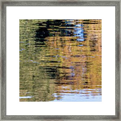Muted Reflections Framed Print by Kate Brown