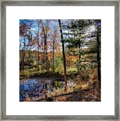 October Late Afternoon Framed Print by Kendall McKernon