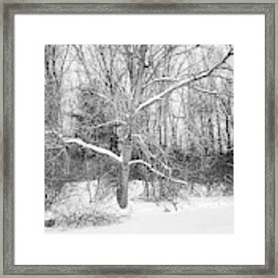 On The Edge Framed Print by Kendall McKernon