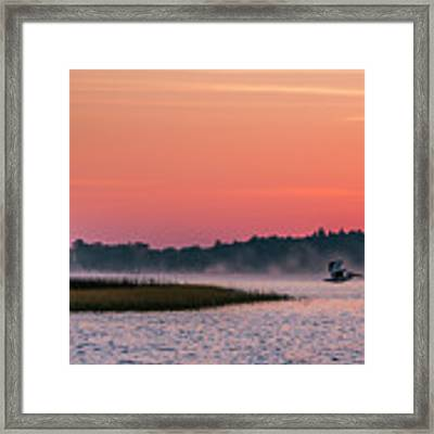 Pelican Mist Framed Print by Patti Deters