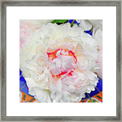 Peonies On A Garden Table Framed Print by William Jobes