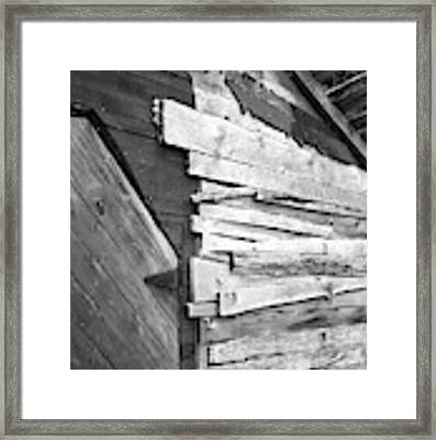 Perspectives Framed Print by Jeni Gray