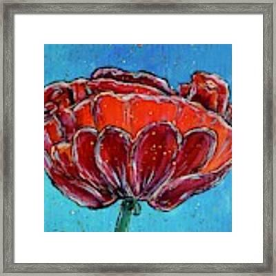Poppy Flower Framed Print by Jacqueline Athmann