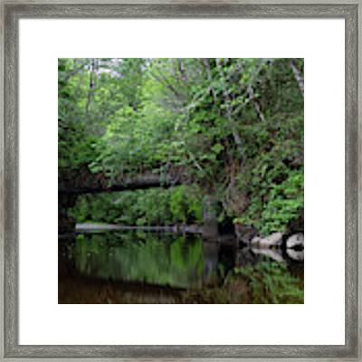 Quatse River Framed Print by Randy Hall
