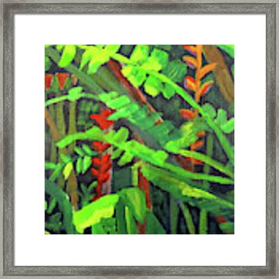 Rain Forest Memories Framed Print by Linda Feinberg