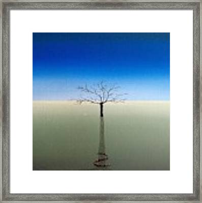 Shadow Of Asclepius Framed Print by Kevin Daly