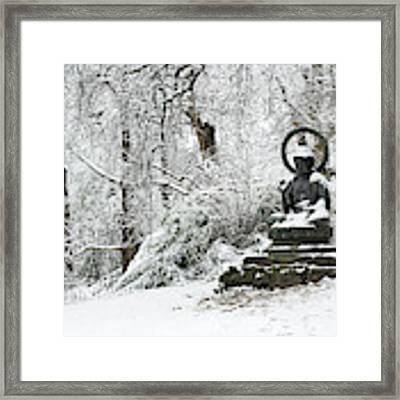 Snow Buddha Batsford Arboretum Framed Print by Tim Gainey