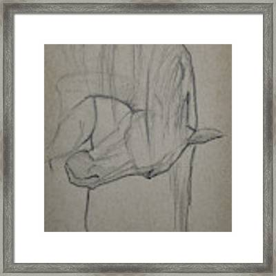 Solace Framed Print by Jani Freimann