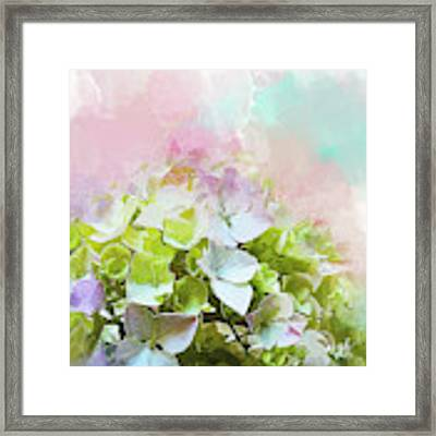 Sorbet Framed Print by Gina Harrison
