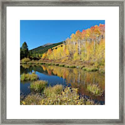 South Elbert Autumn Beauty Framed Print by Cascade Colors