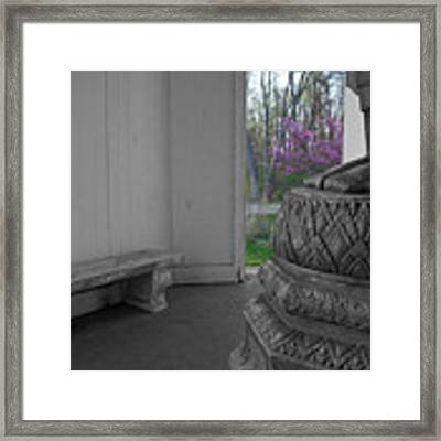 Temple Budding Framed Print by Dylan Punke