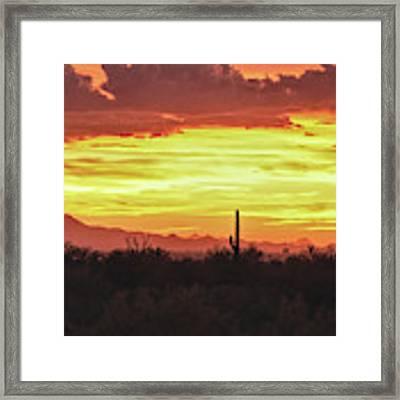 Tucson Mountains Sunset, And Saguaro Framed Print by Chance Kafka