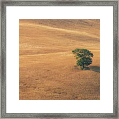 Tuscany Framed Print by Mirko Chessari
