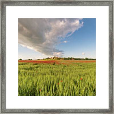 Tuscany Wheat Field Dotted With Red Poppies Framed Print by Mirko Chessari