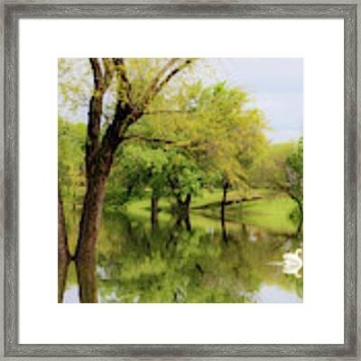 Veteran's Lake 01 Framed Print by Rob Graham
