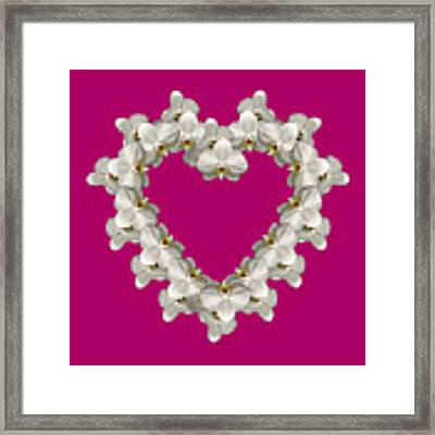 White Orchid Floral Heart Love And Romance Framed Print by Rose Santuci-Sofranko