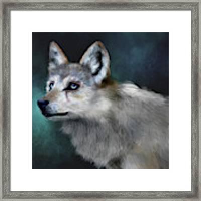 Wolf Art Framed Print by Angela Murdock