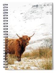 Scottish Highlands Spiral Notebooks
