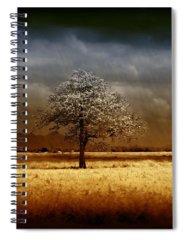 Storm Spiral Notebooks