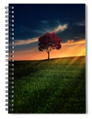 Sunset Spiral Notebooks