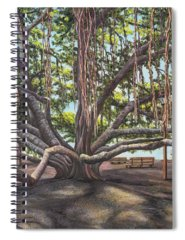 Old Courthouse Paintings Spiral Notebooks