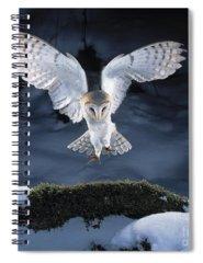 Bird In Flight Spiral Notebooks