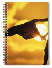 Big Spiral Notebooks