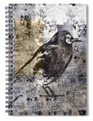 Sly Photographs Spiral Notebooks