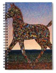 Arabian Spiral Notebooks