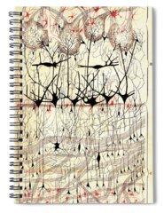 Golgi Photographs Spiral Notebooks