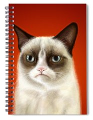 Cat Spiral Notebooks